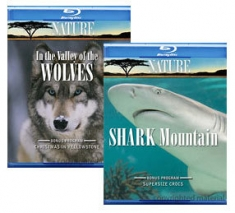 In the Valley of Wolves, Shark Mountain [Blu-ray Box Art]