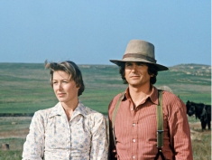 little house on the prairie season 1 - 1
