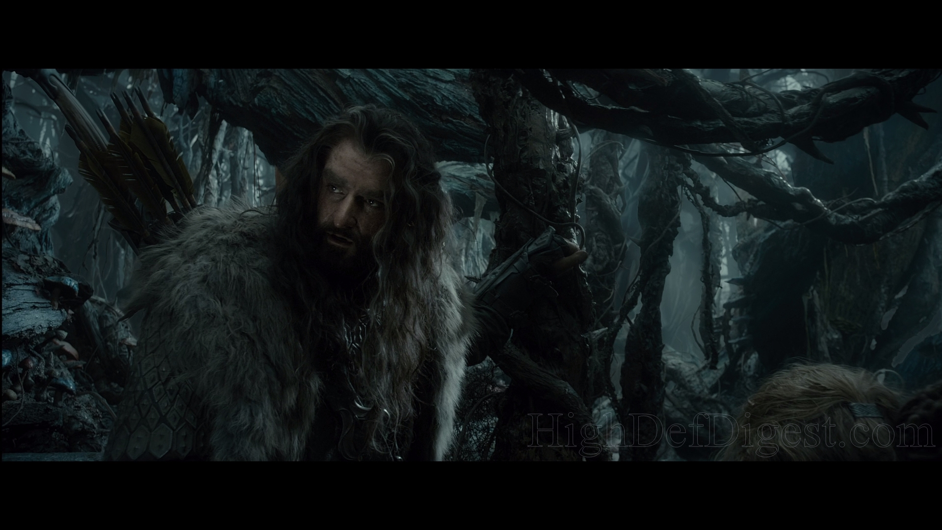 The Hobbit The Desolation of Smaug Bluray Extended