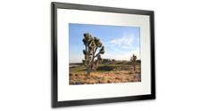 memento smart frame