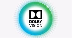 dolby vision logo 2