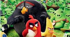 angry birds news