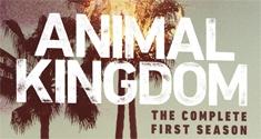 animal kingdom s1 news