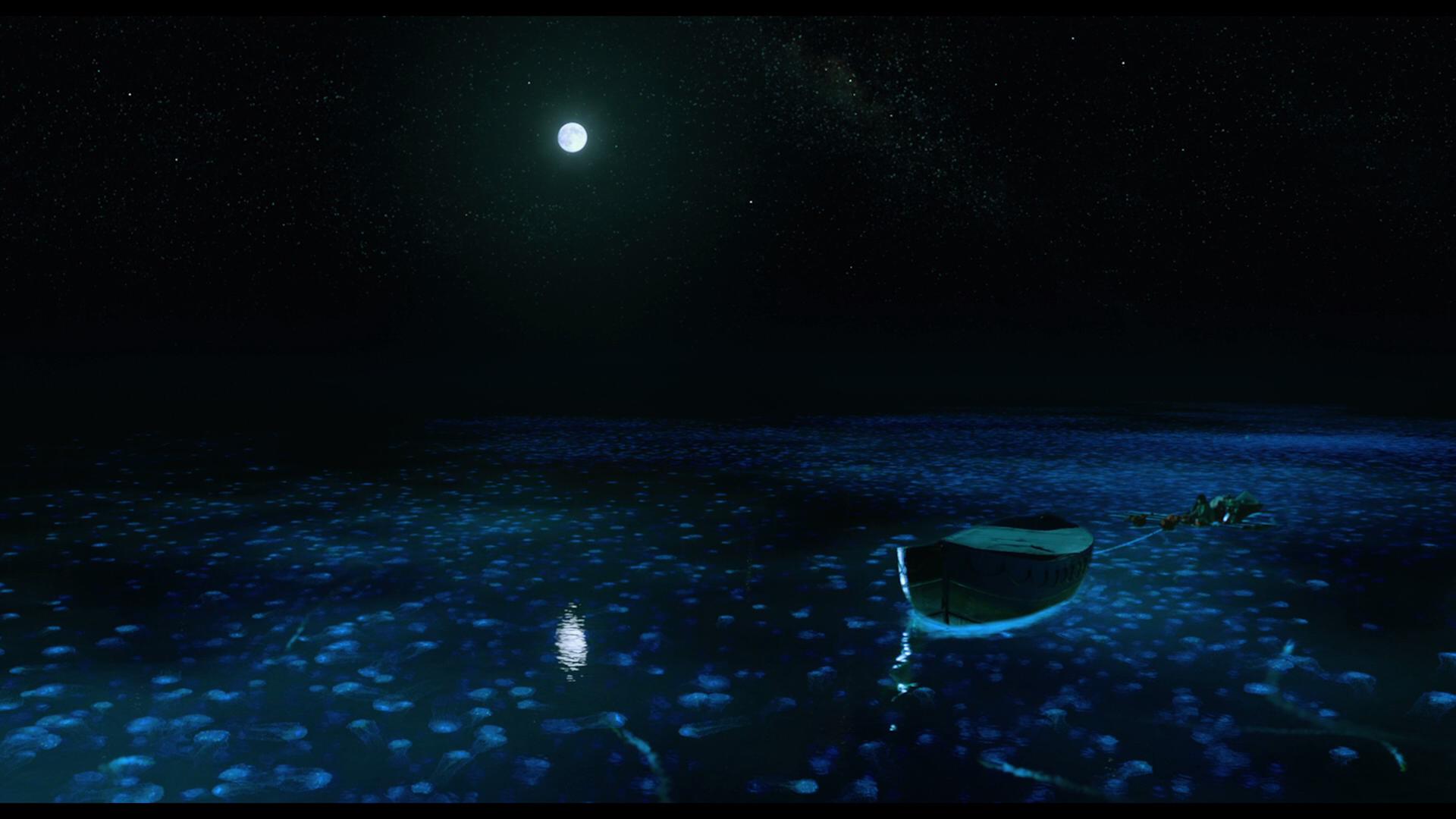 Image Result For Life Of Pi Soundtrack