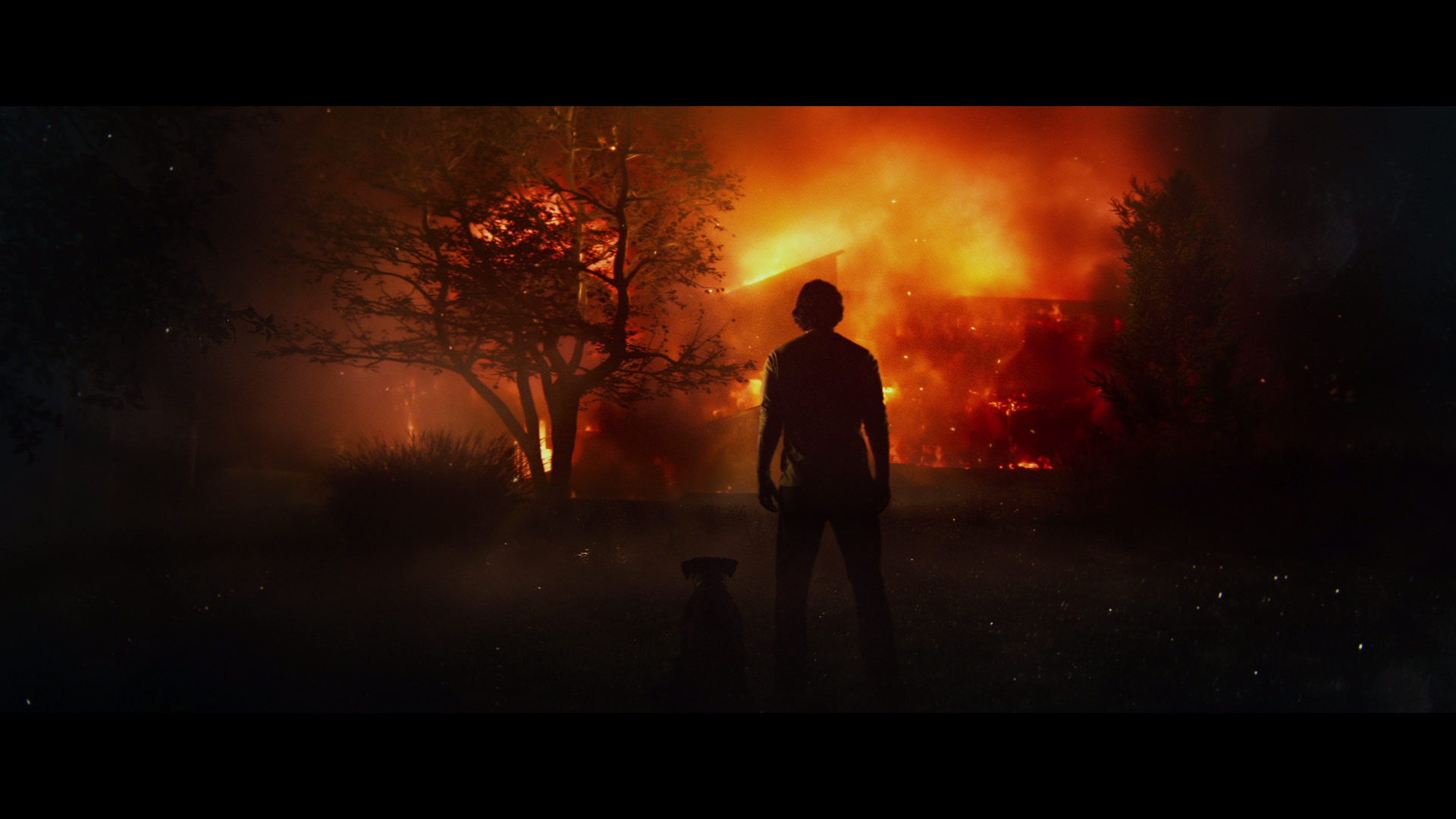 John Wick Chapter 2 Ultra Hd Blu Ray Ultra Hd Review