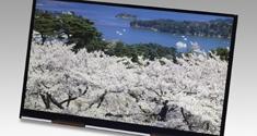 Japan Display 4K Tablet