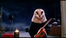 Killer Owl