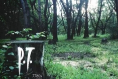 P.T. Cover