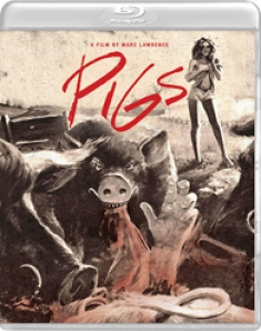 pigs news