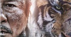 the tiger news