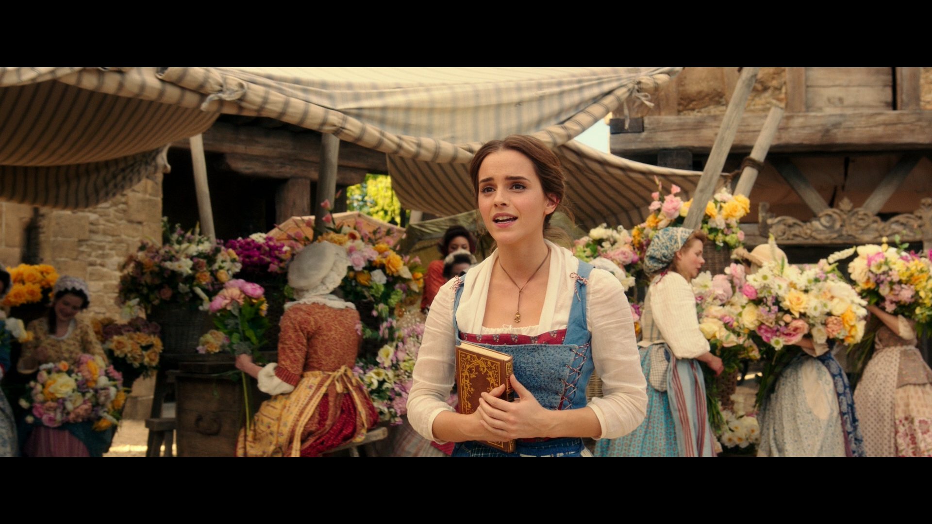 100 Beauty And The Beast 2017 Beauty And The Beast Why