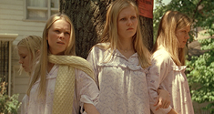 virgin suicides news