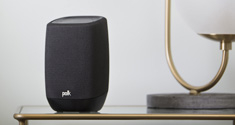 polk assist speaker